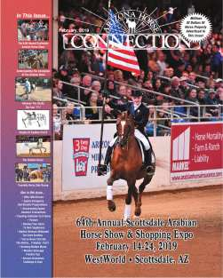 d2267998b Arizona Horse Connection, All Breed Equine Magazine
